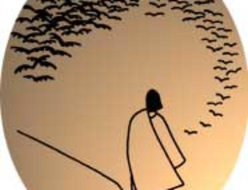 Cuaresma: Experiencia de desierto