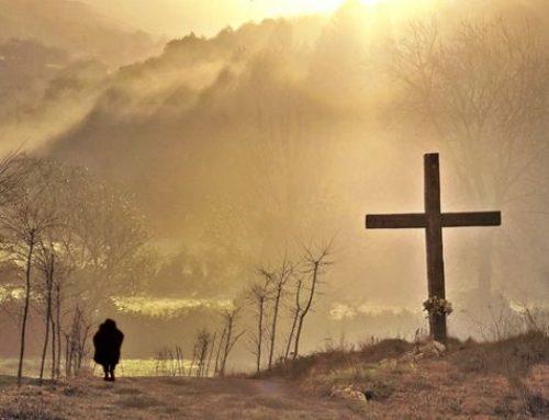 Recorre el camino de la fe
