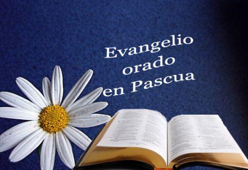 Evangelio Domingos - Pascua A