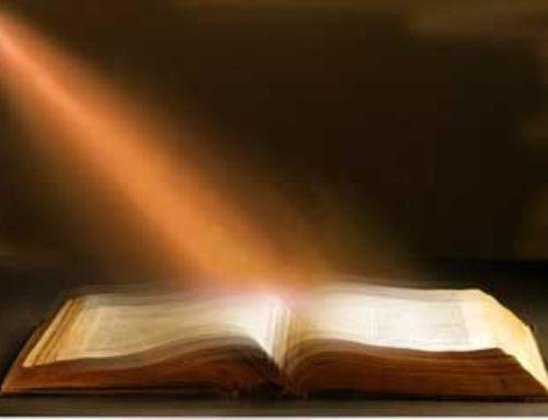 La Palabra, luz en mis senderos