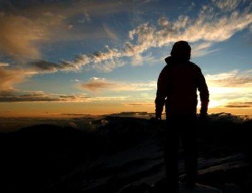 Salmo 8: Una pregunta inquietante: ¿Quién soy?