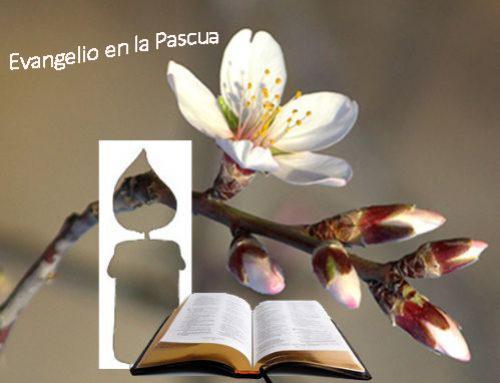 Evangelio día a día. 6ª Semana de Pascua