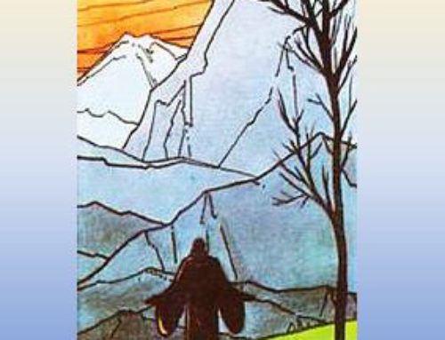 Elogio de la vida solitaria – Francisco Palau