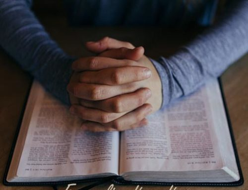 Evangelio: 5ª Semana del Tiempo Ordinario