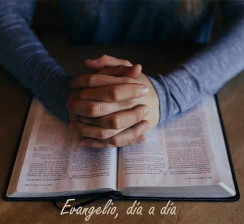 Evangelio diario - Tiempo ordinario - Ciclo C