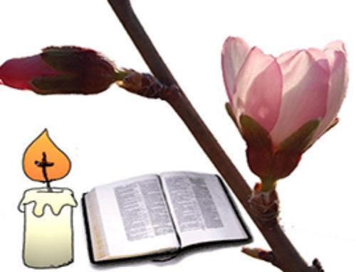Evangelio: Sexta Semana de Pascua
