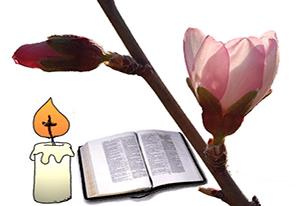 Evangelio diario - Pascua B
