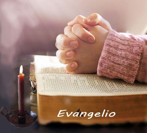 Evangelio diario - Tiempo ordinario - Ciclo A